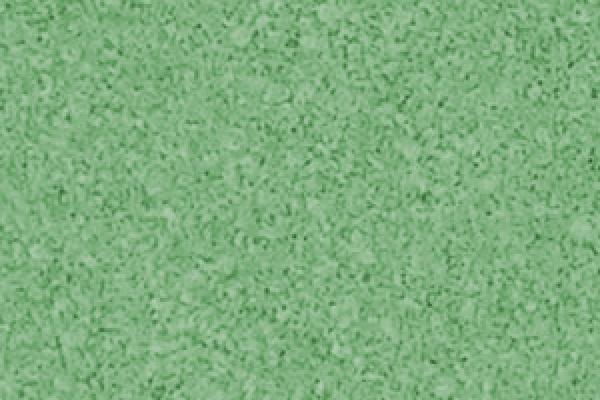 zielony99A045FF-B577-FF62-C513-4221F44939FD.jpg